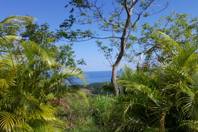 North shore view of .20 acres for sale on Roatan